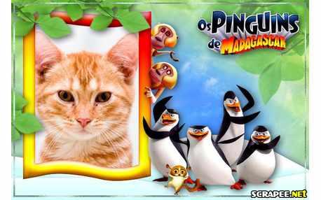 4826-Molduras-Os-Pinguins-de-Madagascar