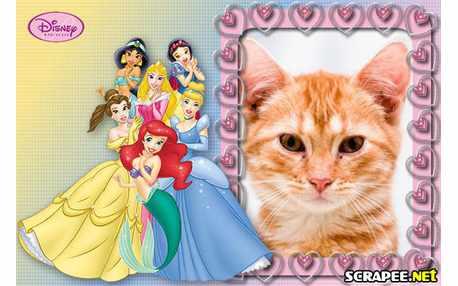 Moldura - Princesas Disney