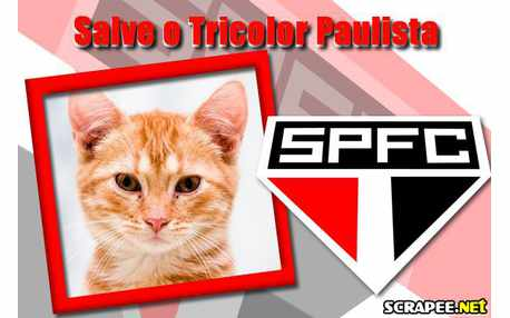 4881-Sao-Paulo-Futebol-Clube