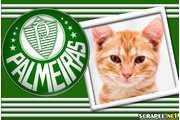 4883-Palmeiras