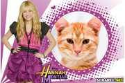 4928-Moldura-Hannah-Montana