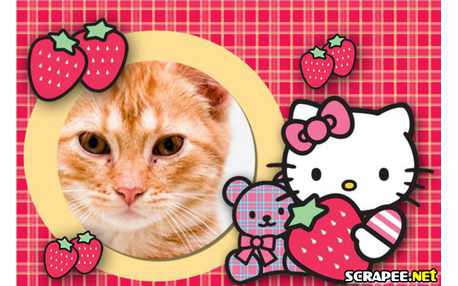 Moldura - Moldura Hello Kitty