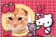 4939-Moldura-Hello-Kitty