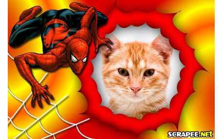 4943-Homem-aranha---teia-de-aranha