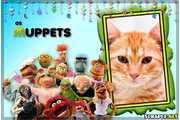 4979-Muppets-Filme