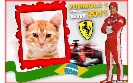Moldura - Formula 1    Interlagos 2011