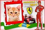 4992-Formula-1----Interlagos-2011