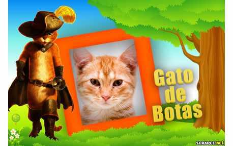 5000-Gato-de-Botas