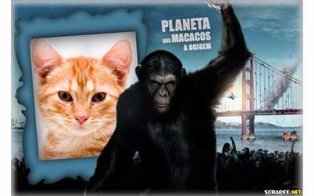 5001-Planeta-dos-Macacos---A-Origem
