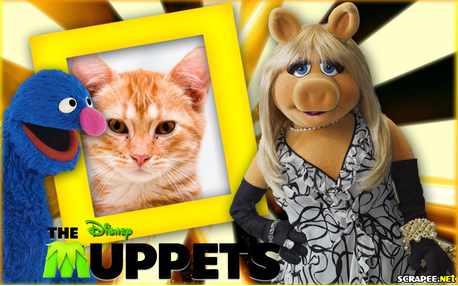 Moldura - Miss Piggy   Filme Os Muppets