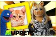 5008-Miss-Piggy---Filme-os-Muppets