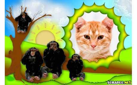 5033-Familia-de-Macacos