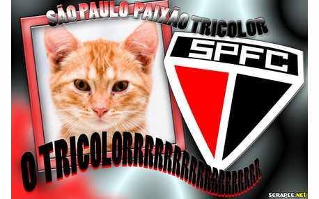 Moldura - Sao Paulo   Tricolor