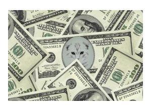 Scrapee.net - Photomontage 100 dolares