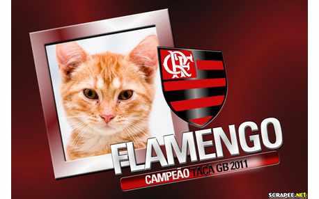 Moldura - Flamengo Campeao 2011