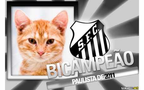 5232-Santos-Bicampeao-Paulista