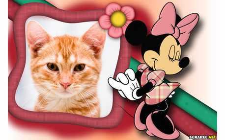 5254-Minnie