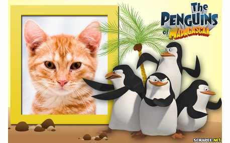 5262-The-Penguins-of-Madagascar