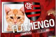 5266-Flamengo-Campeao-Taca-GB-2011