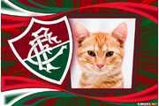 5267-Fluminense---moldura