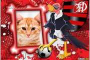 5268-Mengao---Flamengo