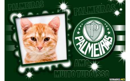 5269-Palmeiras-moldura