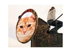 Scrapee.net - Fotomontaje Round Mirror