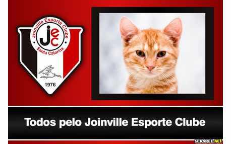 Moldura - Joinville Esporte Clube