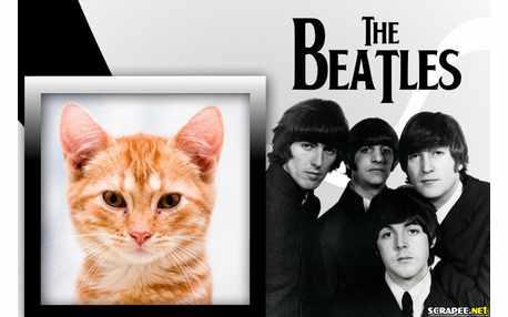 5314-Os-Beatles