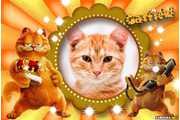 5333-Garfield-2