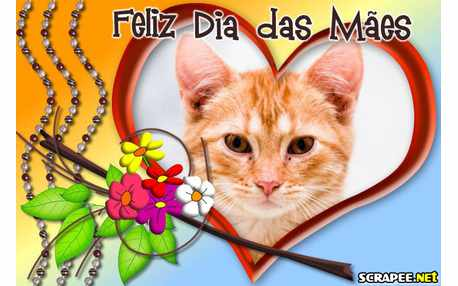 Moldura - Feliz Dia Das Maes