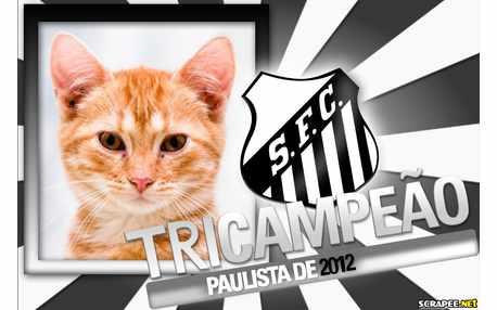 Moldura - Santos Tricampeao Paulista 2012