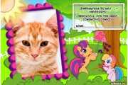 5370-Lembrancinha-Little-Poney