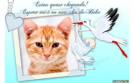 5394-Convite-Cha-de-Bebe