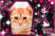 5410-Boneca-Monster-High