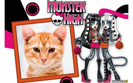 Moldura5411 Monster High
