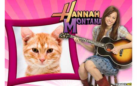 5423-Hannah-Montana