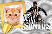 5436-Santos-Campeao-2012