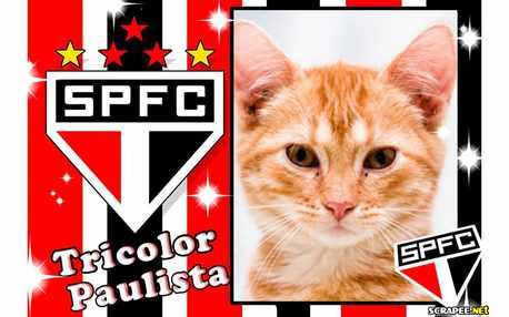 Moldura - Tricolor Paulista   Spsc