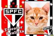 5437-Tricolor-Paulista---SPSC