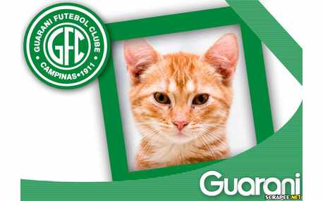 5458-Guarani-Futebol-Clube