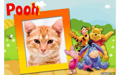 Moldura - Ursinho Pooh E Seus Amigos