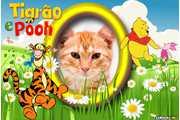 5474-Tigrao-e-Pooh
