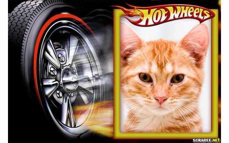 5483-Hot-Weels