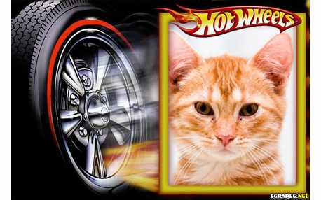 Moldura - Hot Weels