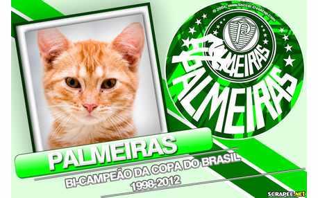 Moldura - Palmeiras Bi Campeao 1998   2012