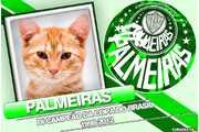 5505-Palmeiras-Bi-Campeao-1998---2012