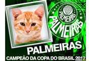 5506-Palmeiras-Campeao