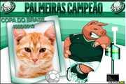 5507-Palmeiras-Campeao-2012