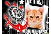 5508-Amor-pelo-Corinthians